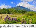 senjogahara, mount, nantai 23273403