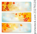 Three abstract autumn banners with color leaves. 23276320