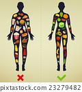 fat, vector, food 23279482