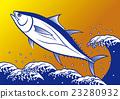 金槍魚 北方藍鰭金槍魚 跳 23280932