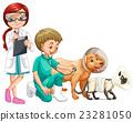 vet dog animal 23281050