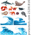Ocean waves and sea animals 23281816