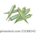 秋葵 夏令时蔬 夏季蔬菜 23288242