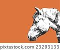 horse, face, facial 23293133
