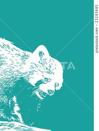 Red Panda [Animal/Series] 23293685