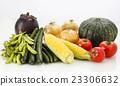 蔬菜 夏令時蔬 夏季蔬菜 23306632