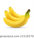 Realistic illustration of bunch of bananas 23316579
