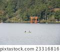 箱根神社鳥居 23316816
