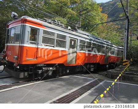 Hakone Tozan Train 23316818