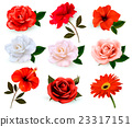 Set of a beautiful flowers isolated on background 23317151