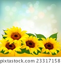 Sunflowers Background With Sunflower And Leaves. 23317158