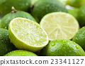Wet Limes. 23341127