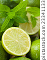 Wet limes and mint. 23341133