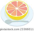 fruit, fruits, grapefruit 23366011