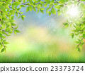 summer background with green leaves 23373724