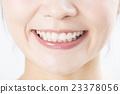 ฟัน,ปาก,ผู้หญิง 23378056