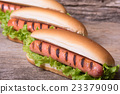 Barbecue Grilled Hot Dog 23379090