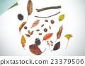 낙엽, 고엽, 마른 잎 23379506