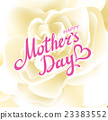Happy Mothers Day Beautiful Blooming whire Rose 23383552