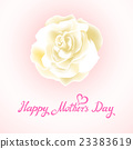 Happy Mothers Day Beautiful Blooming whire Rose 23383619