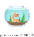 fishbowl goldfish goldfishes 23384819