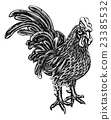 Woodcut Rooster Chicken 23385532