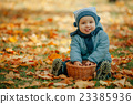 little boy in autumn park 23385936