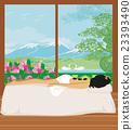 woman getting hot stone massage in spa salon 23393490