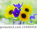 Vase flowers Sunflower and Chinese cabbage 23400456