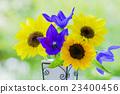 꽃병의 꽃 해바라기와 도라지 23400456