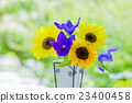 Vase flowers Sunflower and Chinese cabbage 23400458