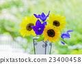 꽃병의 꽃 해바라기와 도라지 23400458