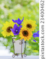 Vase flowers Sunflower and Chinese cabbage 23400462
