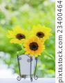 Vase of sunflower flowers 23400464