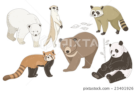 illustration, animal, bear 23401926