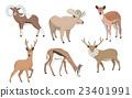 插图 动物 鹿 23401991