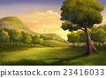 樹木 樹 木頭 23416033