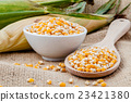Grains of dried corn in the wooden spoon  23421380