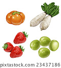 fruit, fruits, vegetables 23437186