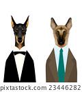 动物 牧羊人 狗 23446282