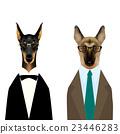 动物 牧羊人 狗 23446283