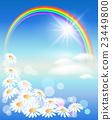 Rainbow with flowers 23449800