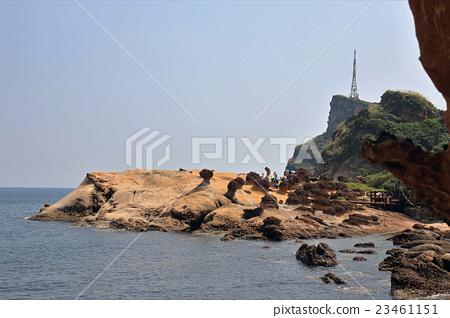 野柳地質公園(台灣) 23461151
