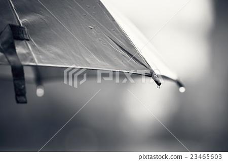 Umbrella during rain 23465603
