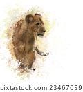 Lion Cub watercolor 23467059
