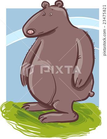 cartoon bear animal character 23475821