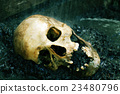 Real human skull as crime scene, color manipulated 23480796