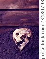 Real human skull as crime scene, color manipulated 23480798