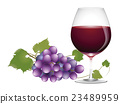 葡萄酒 紅酒 酒 23489959
