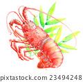 spiny, lobster, bamboo 23494248
